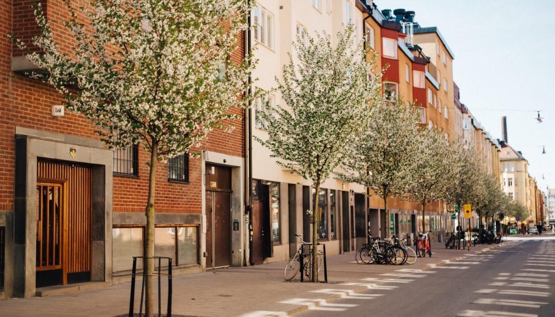 Lisebery-photographe-mariage-famille-grenoble-fontainebleau-nature-stockholm-printemps (1)